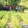 Jardines Botánicos de Puerto Vallarta se une a CCH Puerto Vallarta-Santa Bárbara