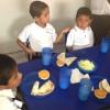 Trabajan en Equipo para Fortalecer Alimentación de Niños Escolarizados