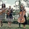 Inicia el V Ciclo de Música de Cámara Joven en Guadalajara