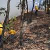 47 incendios forestales se han registrado en Jalisco en lo que va del año