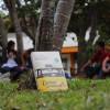 """Lanza CUCosta campaña de fomento a lectura """"Cazadores de libros"""""""