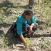 Crean apoyo para proyectos forestales encabezados por mujeres: PRONAFOR