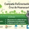 Invitan a la Campaña de Reforestación en La Cruz de Huanacaxtle