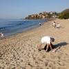 Riviera Nayarit se une al Día Internacional de la Limpieza de Playas