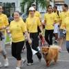 Todo un éxito la caminata con causa por el Primer Aniversario de la Integración Marriott-Starwood