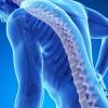 Una adecuada alimentación puede reducir el riesgo de Osteoporosis