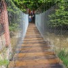 Rehabilitan puente colgante sobre el río Cuale