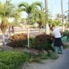 Realizan trabajos de limpieza en la avenida principal